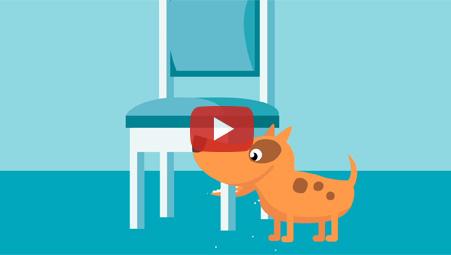 Imagen video Timbrit