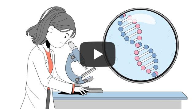 Videos corporativos dibujados